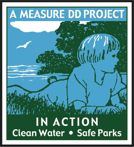 Measure DD in Action logo